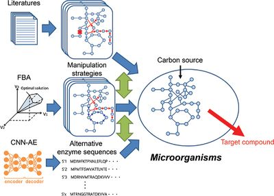 Metabolic engineering of Deinococcus radiodurans for pinene production from glycerol