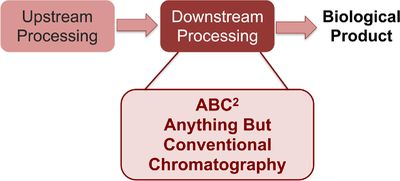 Anything but Conventional Chromatography Approaches in Bioseparation