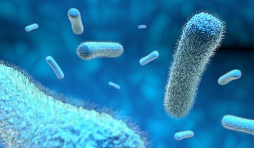 X-Ray Technology Sheds New Light on Antibiotic Synthesis