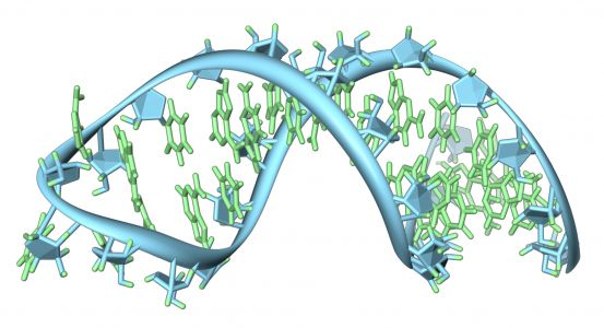 DTx Pharma Raises $10.6M to Advance New Way to Deliver RNA Drugs