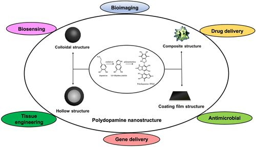 Current Advances in the Utilization of Polydopamine Nanostructures in Biomedical Therapy